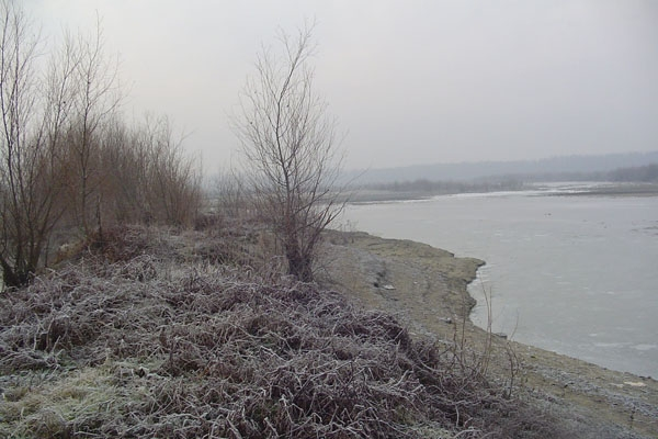 Stuur foto van Prut, frozen river on the border with Romania van Moldavië als een gratis kaart