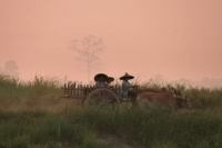 Photo de Ox cart on the bank of Ayeyarwady river - Myanmar (Burma)