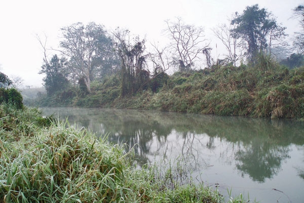 Send picture of Crocodile Stream in Chitwan National Park from Nepal as a free postcard