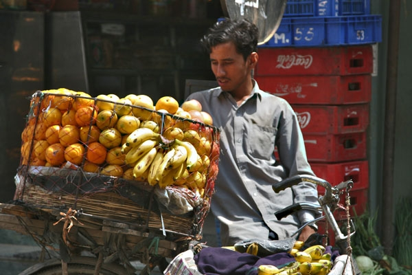 Send picture of Fruit vendor in Kathmandu from Nepal as a free postcard