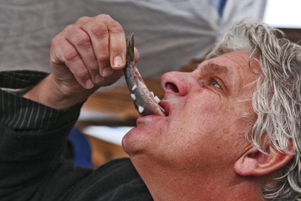 Stuur foto van Man eating raw herring, a Dutch delicacy van Nederland als een gratis kaart