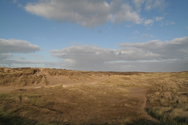 Stuur foto van Dunes in Langevelderslag van Nederland als een gratis kaart
