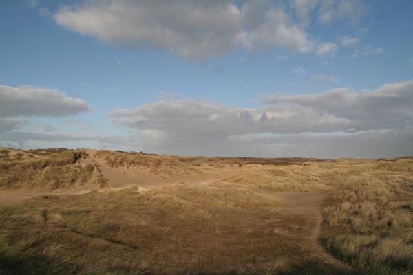 Stuur foto van Dunes in Langevelderslag van Nederland als een gratis kaart