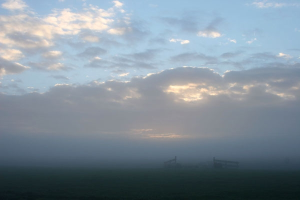 Stuur foto van Dutch countryside in the early morning van Nederland als een gratis kaart