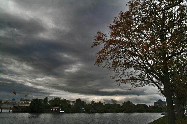 Stuur foto van Fall sky and falling leaves in Amsterdam van Nederland als een gratis kaart