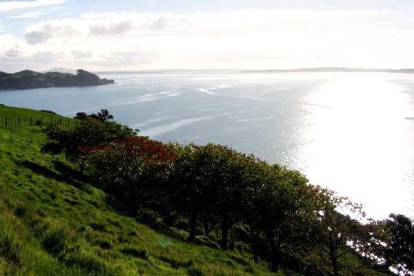 Send picture of Coast in Auckland, North Island from New Zealand as a free postcard