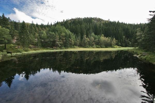 Stuur foto van Lake near Bergen van Noorwegen als een gratis kaart