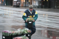 Foto van Flower seller - Norway