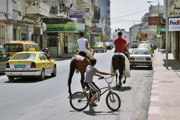 Envoyer photo de Horseback riding is common to see in Nablus de Palestine comme carte postale électronique