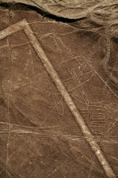Picture of The whale image and some of the many lines in Nazca desert - Peru