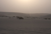 Click to enlarge picture of Climate in Qatar
