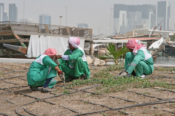 Send picture of Men doing garden work in Doha from Qatar as a free postcard