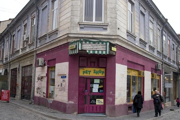 Envoyer photo de Pet shop in Bucharest de Roumanie comme carte postale électronique