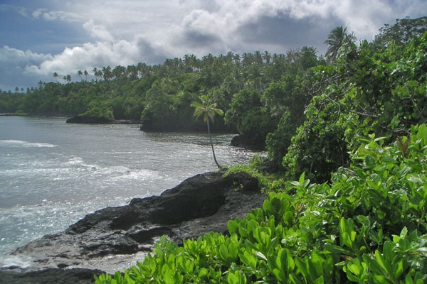 Send picture of Coastline in southern Samoa from Samoa as a free postcard