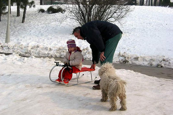 Send picture of Enjoying the snow in Tasmajdan park from Serbia as a free postcard