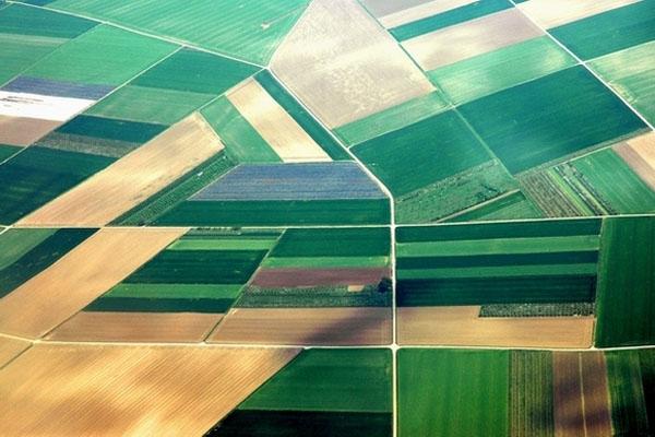 Enviar foto de Serbian fields seen from plane de Serbia como tarjeta postal eletrónica