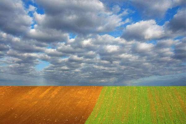 Enviar foto de Fields in Banata, Vojvodina de Serbia como tarjeta postal eletrónica