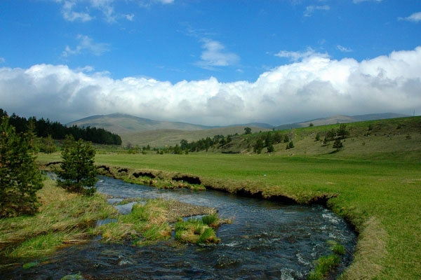 Send picture of Rzav river in Zlatibor mountains from Serbia as a free postcard