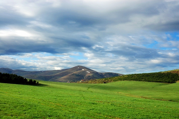 Send picture of Green fields near Zlatibor mountain from Serbia as a free postcard