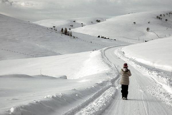 Spedire foto di Zlatibor mountain in January di Serbia come cartolina postale elettronica