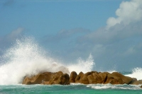 Foto di Waves crashing against the rocks in the Seychelles - Seychelles