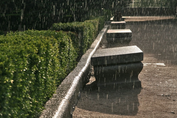 Send picture of Rain and sun in the Sabatini gardens from Spain as a free postcard