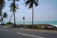 Picture of Road by the Sri Lanka coastline - Sri Lanka
