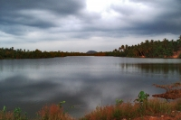 Picture of Lake landscape in Sri Lanka - Sri Lanka