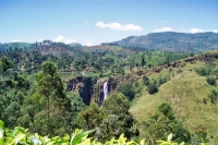 Picture of Tea gardens and waterfall - Sri Lanka