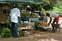 Foto van Fruit sellers in Surinam - Surinam