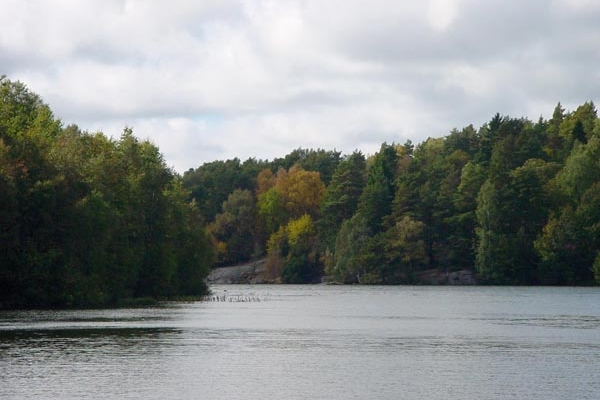 Send picture of Lake and trees in Delsjön, near Gothenburg from Sweden as a free postcard