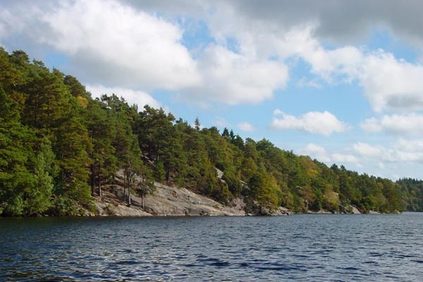 Send picture of Bank of Delsjön: rocks, trees and water from Sweden as a free postcard