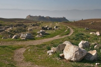 Picture of Path near Apamea - Syria