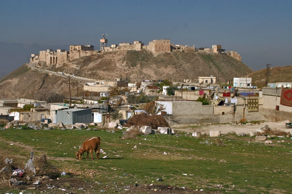 Send picture of A small village close to Apamea from Syria as a free postcard