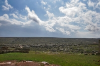 Click to enlarge picture of Nature in Syria