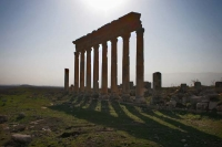 Photo de Pillars of Apamea ruins casting long shadows - Syria