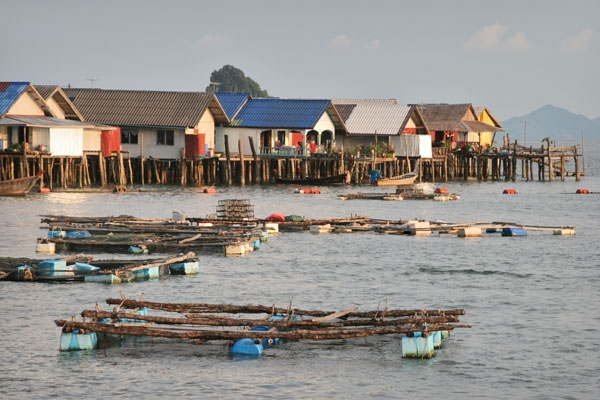 Send picture of Houses and boats on Koh Panyi from Thailand as a free postcard