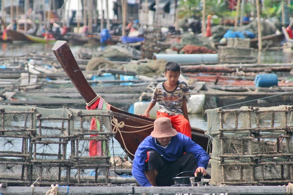 Send picture of Boy watching a fisherman work on Koh Panyi from Thailand as a free postcard