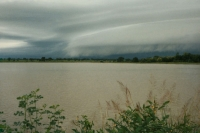 Foto di Storm coming up in the north of Togo, near the border with Burkina Faso - Togo