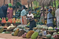 Picture of Fruit stall in western Uganda - Uganda
