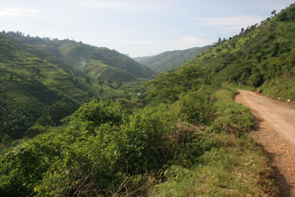 Send picture of Road through the lush and green mountains in western Uganda from Uganda as a free postcard