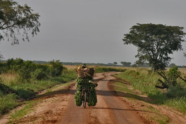 Spedire foto di Loaded, and a long way home di Uganda come cartolina postale elettronica