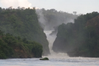 Photo de Murchison Falls - Uganda