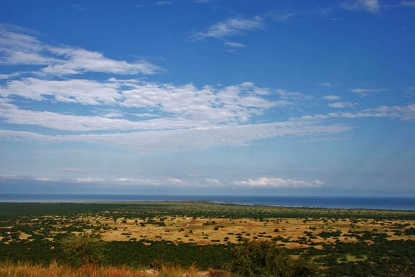  View over Lake Albert