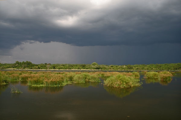 Send picture of River Nile just before a storm from Uganda as a free postcard