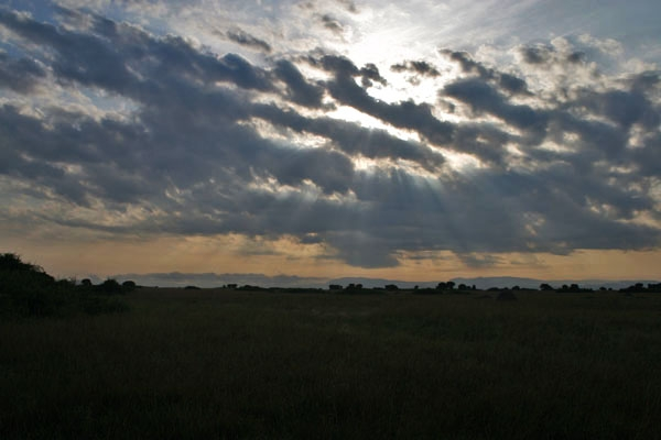 Send picture of Early morning sun over the savannah in western Uganda from Uganda as a free postcard