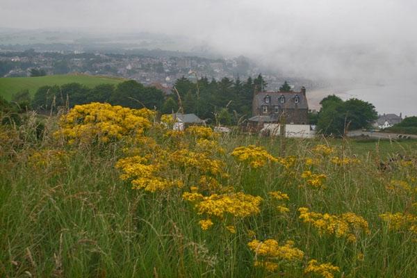Enviar foto de Small house outside Aberdeen de Reino Unido como tarjeta postal eletrónica