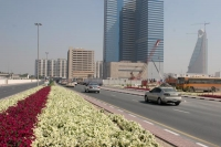Foto di Road and flowers in Dubai - United Arab Emirates