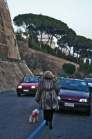 Picture of Woman walking her dog on a street in Vatican City - Vatican City