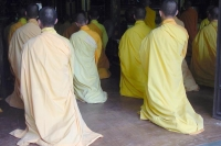 Foto van Praying Buddhist monks - Vietnam